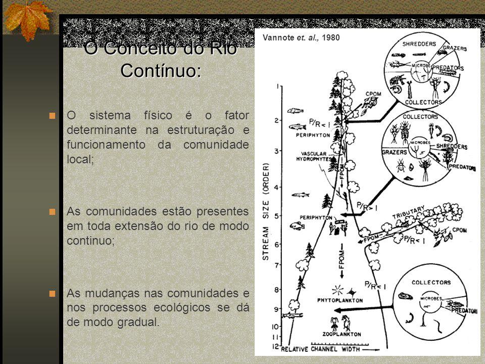 O Conceito do Rio Contínuo: