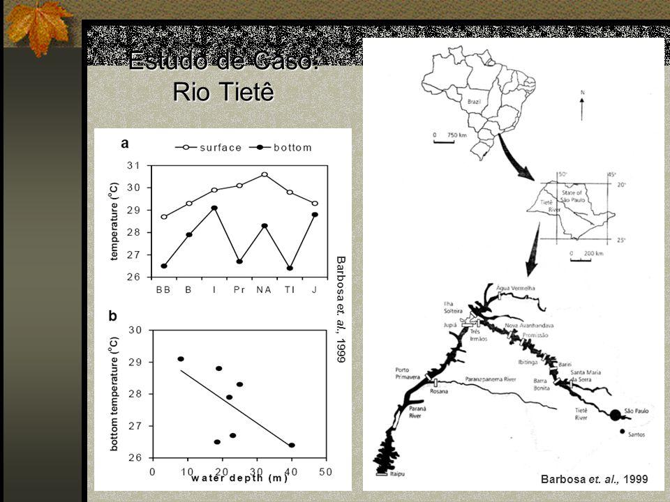 Estudo de Caso: Rio Tietê