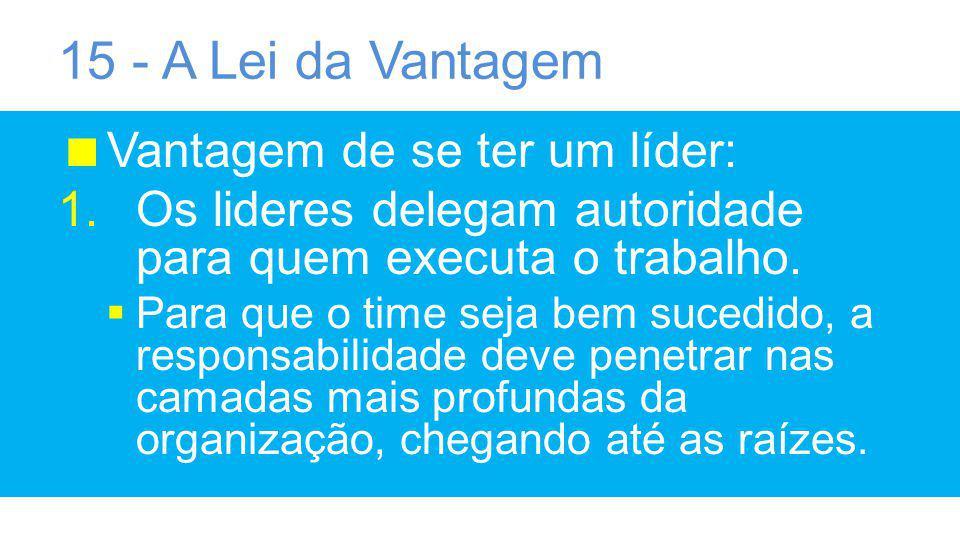 15 - A Lei da Vantagem Vantagem de se ter um líder: