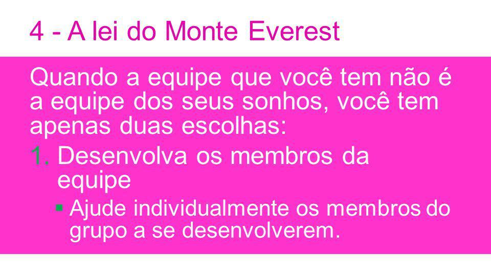 4 - A lei do Monte Everest Quando a equipe que você tem não é a equipe dos seus sonhos, você tem apenas duas escolhas: