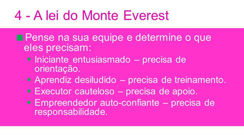 4 - A lei do Monte Everest Pense na sua equipe e determine o que eles precisam: Iniciante entusiasmado – precisa de orientação.