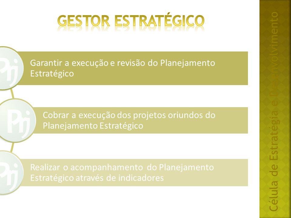 Gestor ESTRATÉGICO Célula de Estratégia e Desenvolvimento