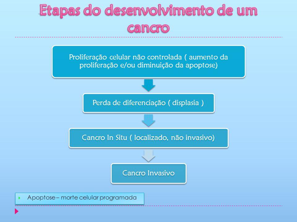 Etapas do desenvolvimento de um cancro