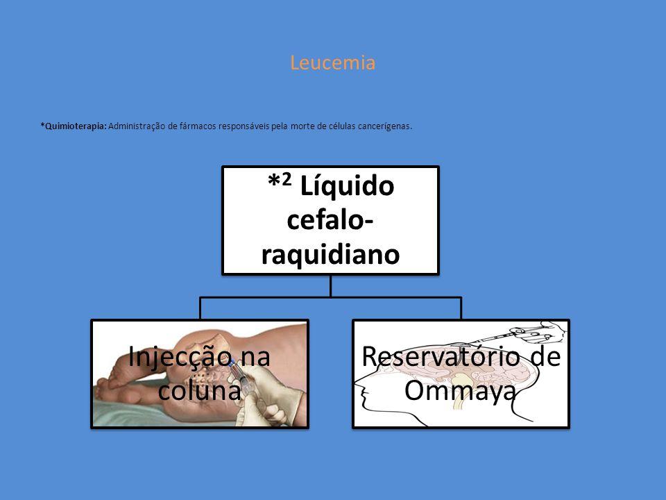 *2 Líquido cefalo-raquidiano