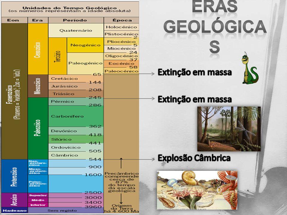 Eras Geológicas Extinção em massa Extinção em massa Explosão Câmbrica