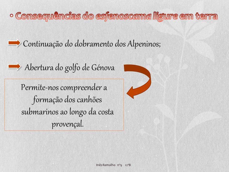 Consequências do esfenoscama ligure em terra