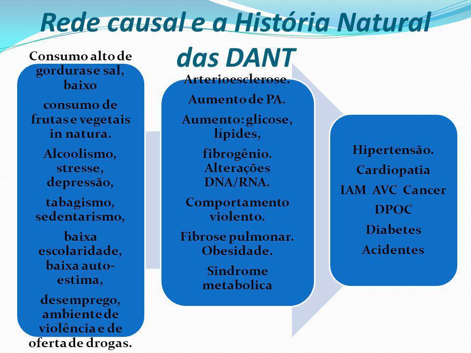 Rede causal e a História Natural das DANT