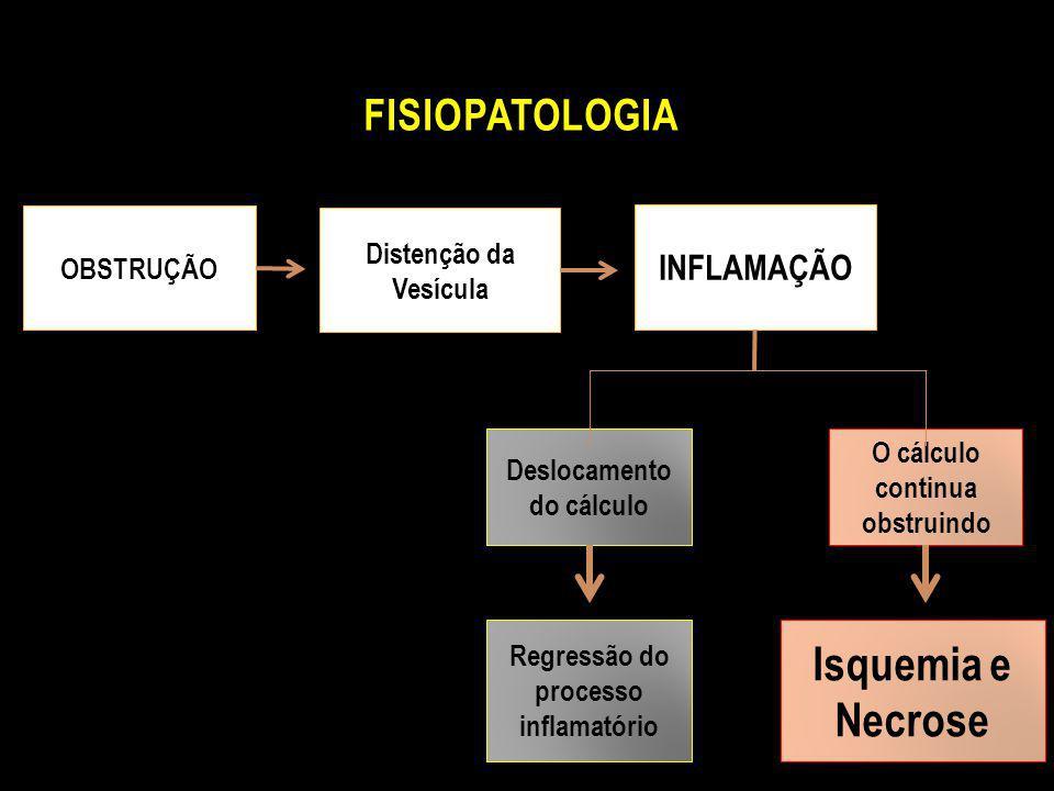 Isquemia e Necrose Fisiopatologia INFLAMAÇÃO Distenção da Vesícula