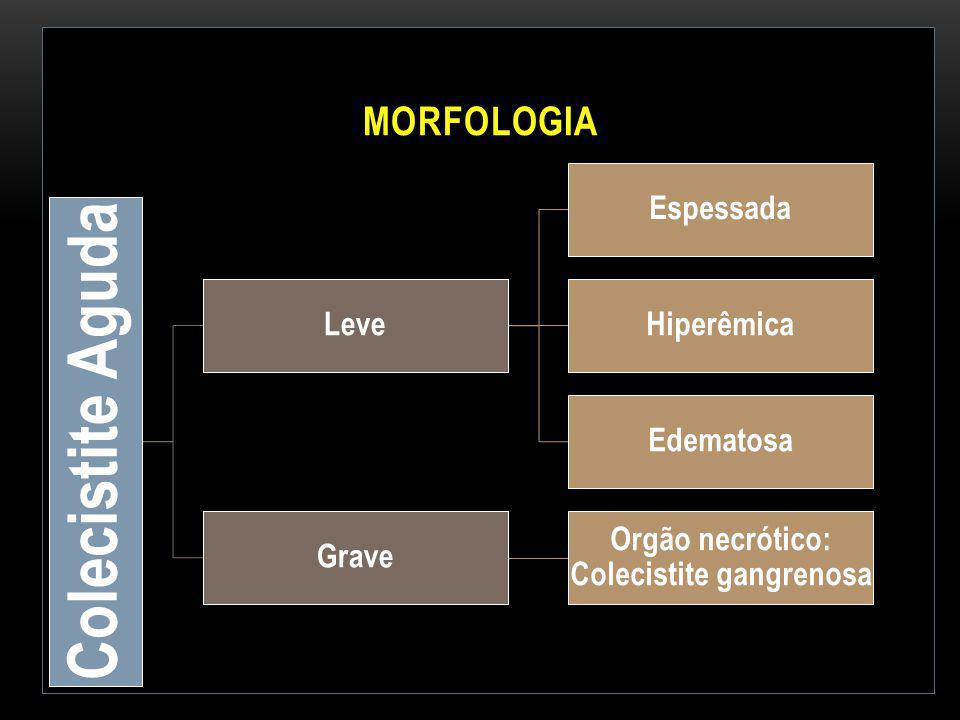 Orgão necrótico: Colecistite gangrenosa