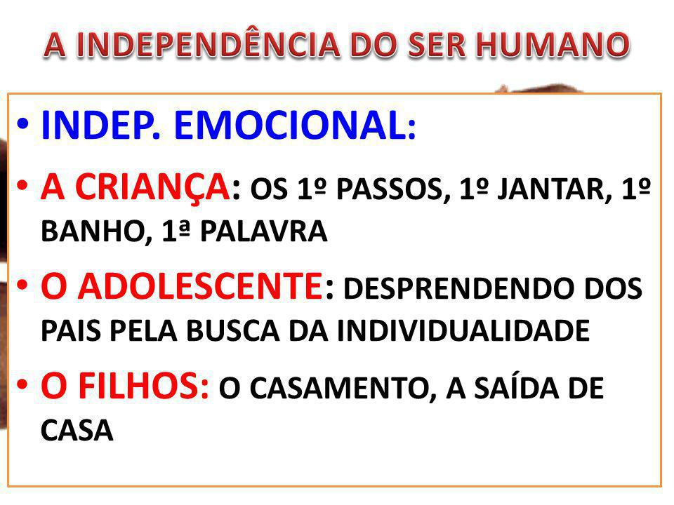 A INDEPENDÊNCIA DO SER HUMANO