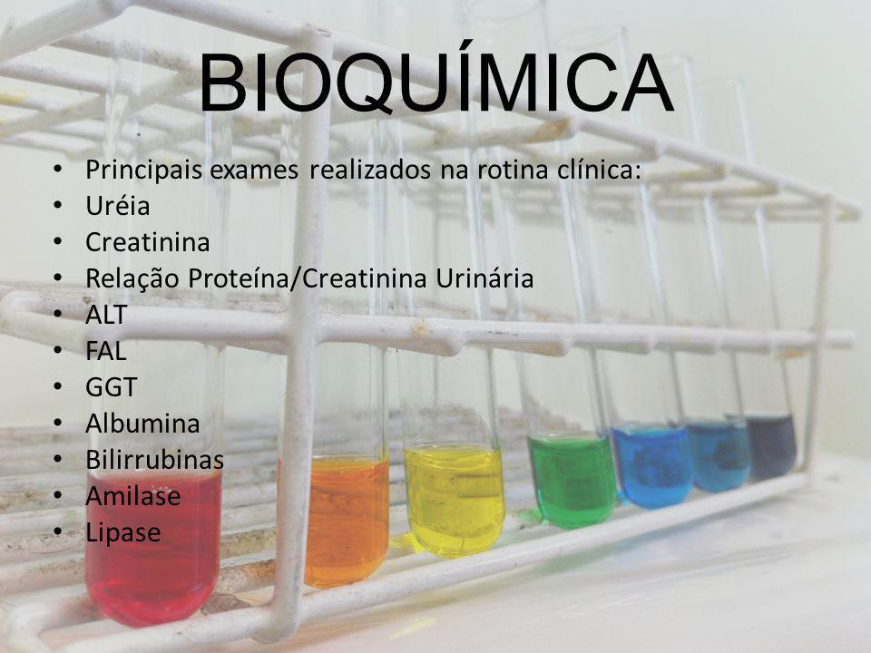 BIOQUÍMICA Principais exames realizados na rotina clínica: Uréia