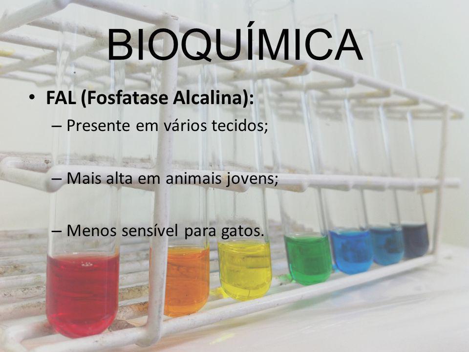 BIOQUÍMICA FAL (Fosfatase Alcalina): Presente em vários tecidos;
