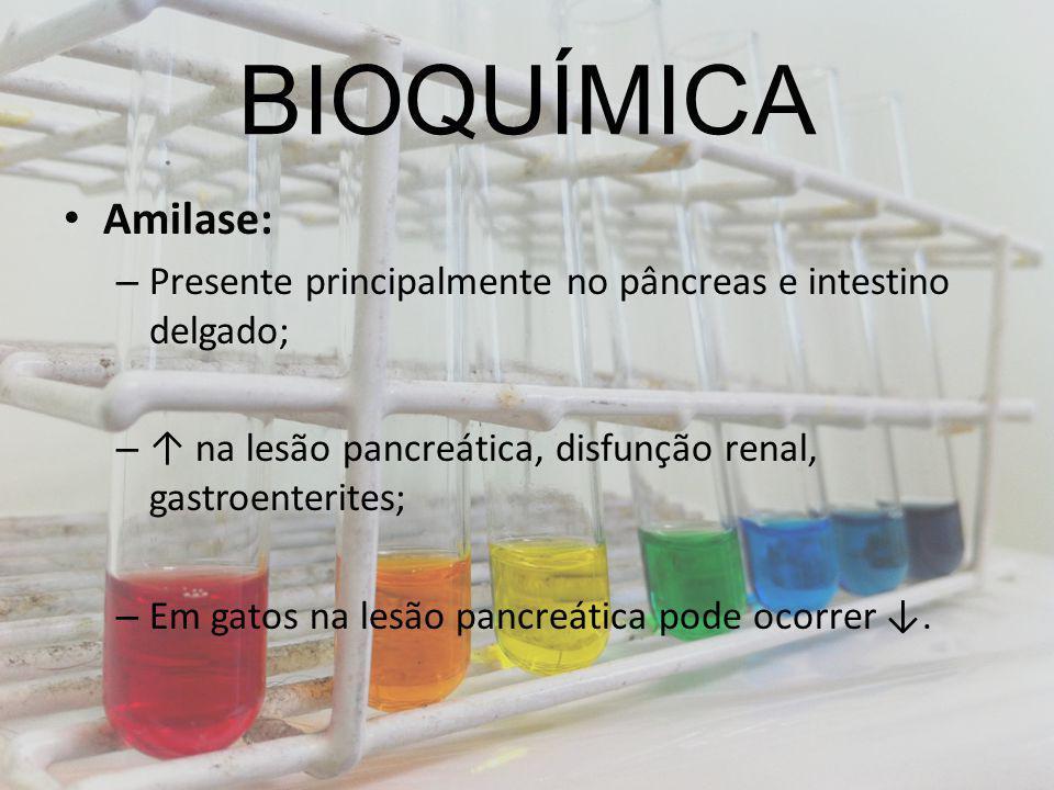 BIOQUÍMICA Amilase: Presente principalmente no pâncreas e intestino delgado; ↑ na lesão pancreática, disfunção renal, gastroenterites;