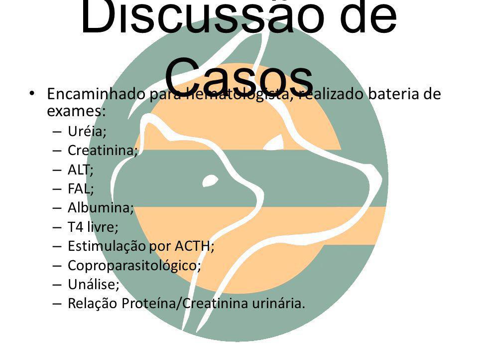 Discussão de Casos Encaminhado para hematologista, realizado bateria de exames: Uréia; Creatinina;