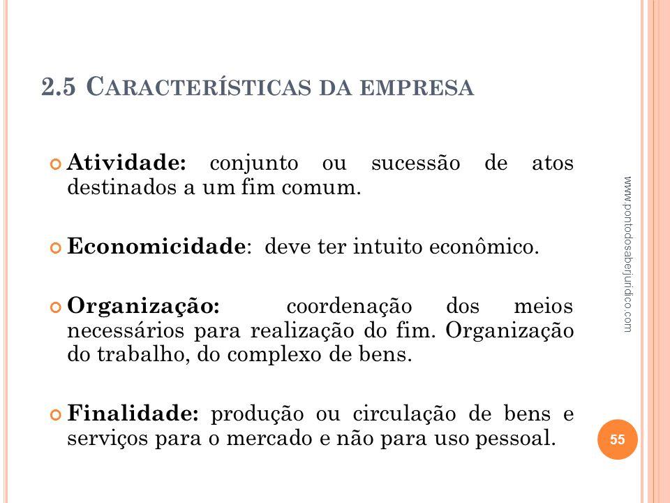 2.5 Características da empresa