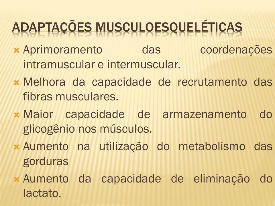 Adaptações Musculoesqueléticas