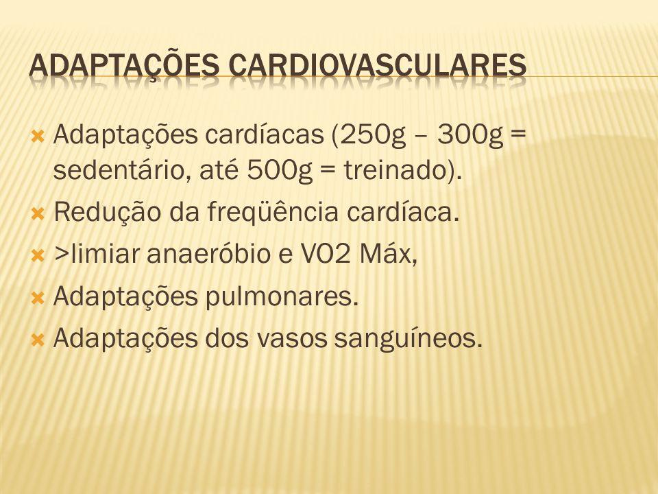 Adaptações Cardiovasculares