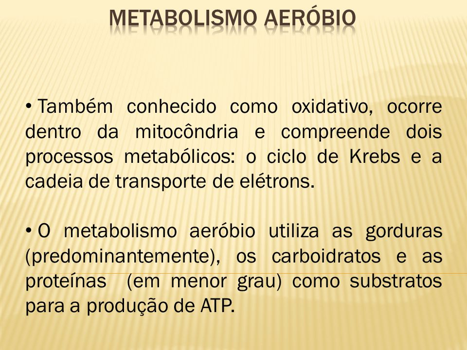 Metabolismo Aeróbio