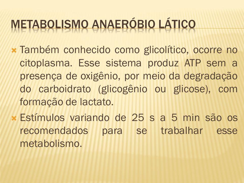 Metabolismo Anaeróbio Lático