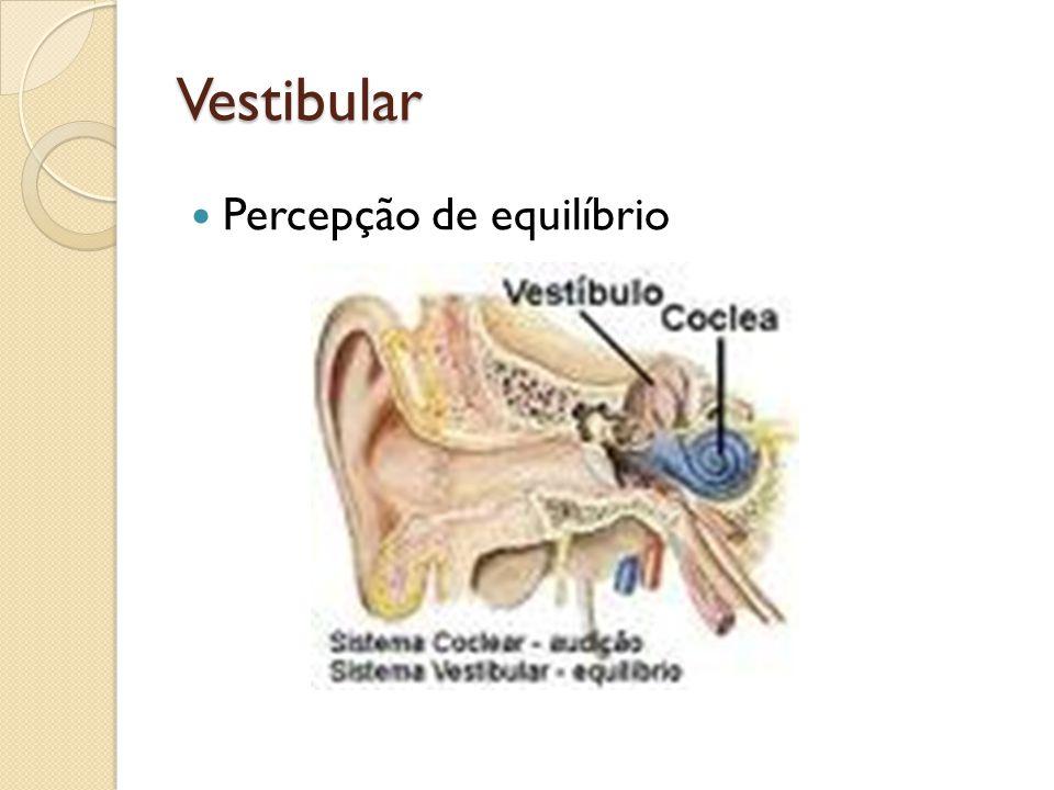 Vestibular Percepção de equilíbrio