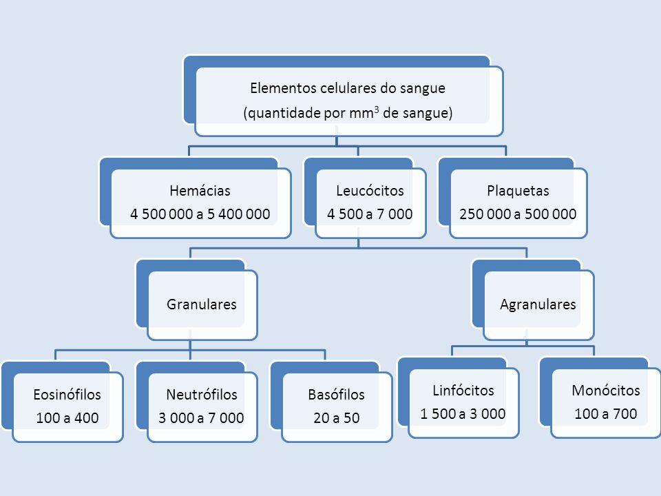 Elementos celulares do sangue (quantidade por mm3 de sangue)