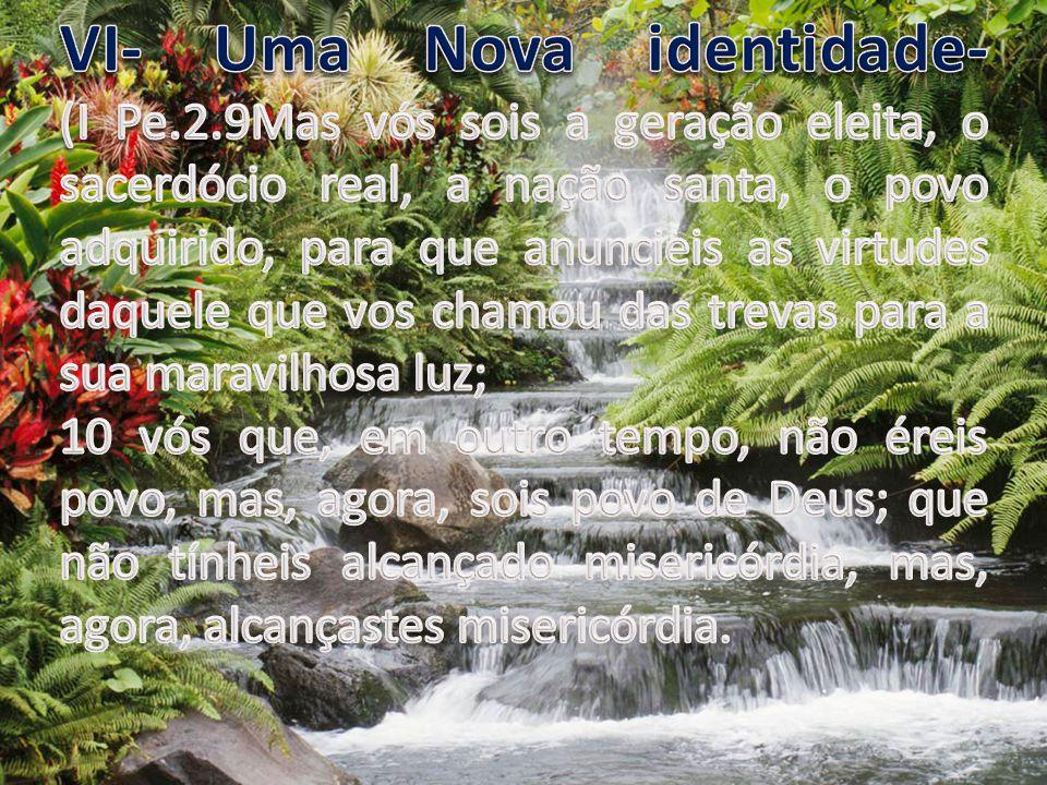 VI- Uma Nova identidade- (I Pe. 2