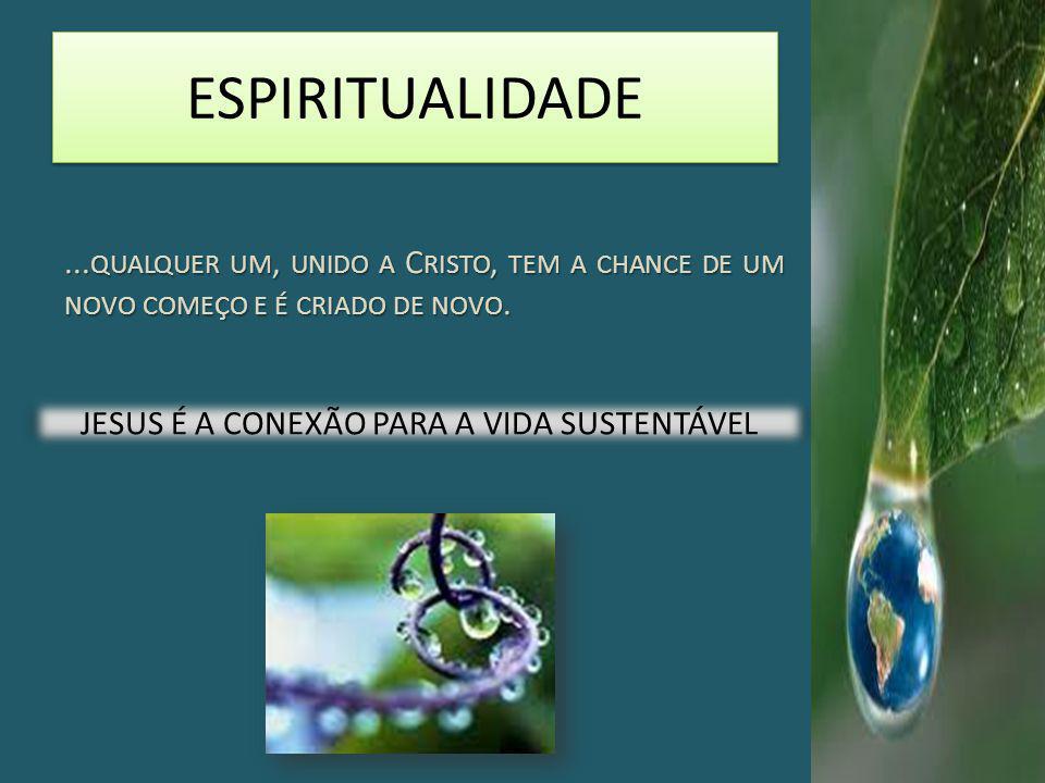 JESUS É A CONEXÃO PARA A VIDA SUSTENTÁVEL