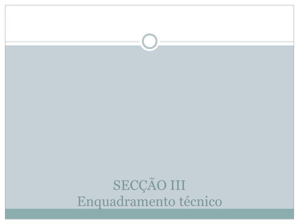 SECÇÃO III Enquadramento técnico