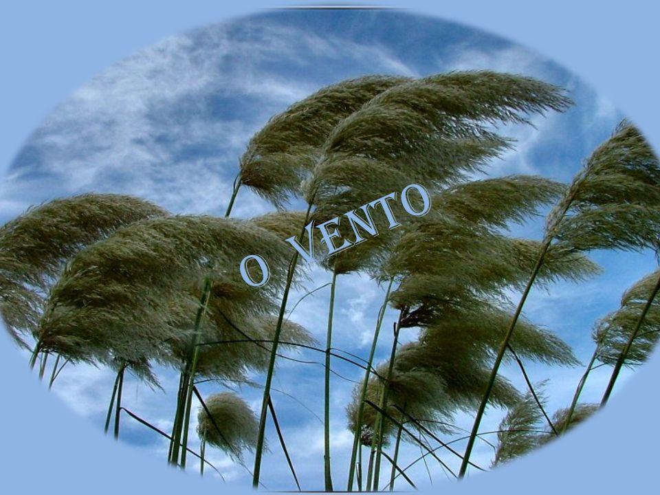 o vento