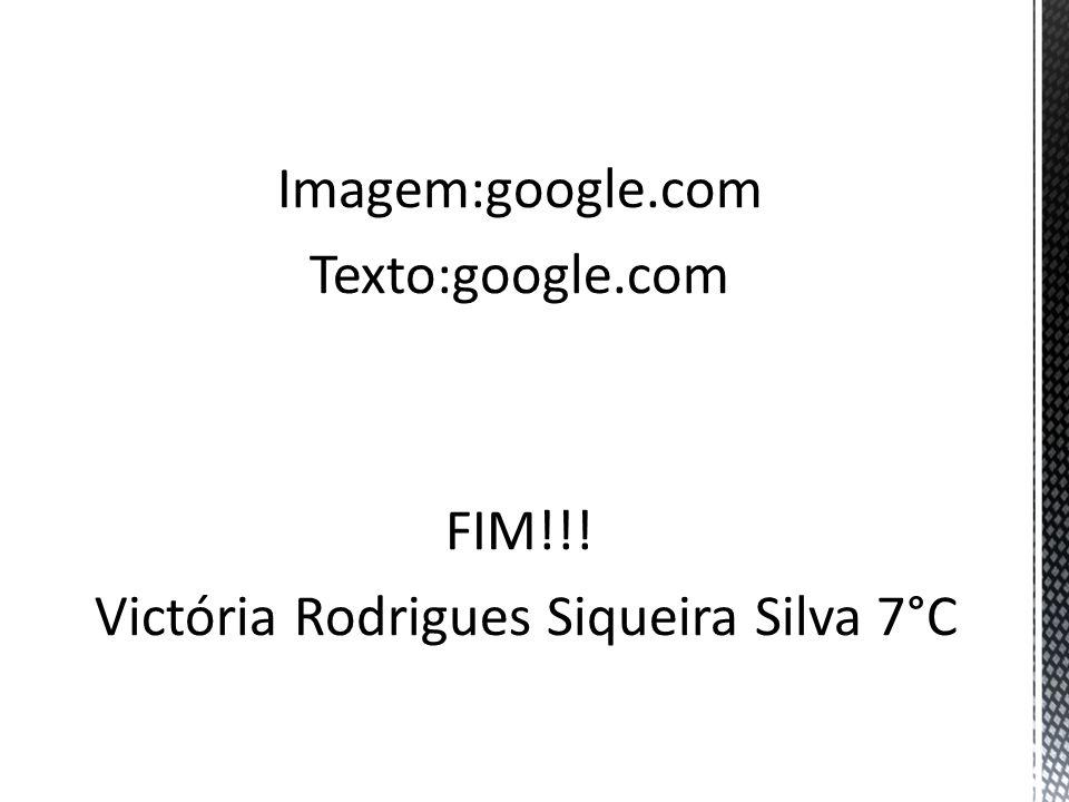 Imagem:google. com Texto:google. com FIM