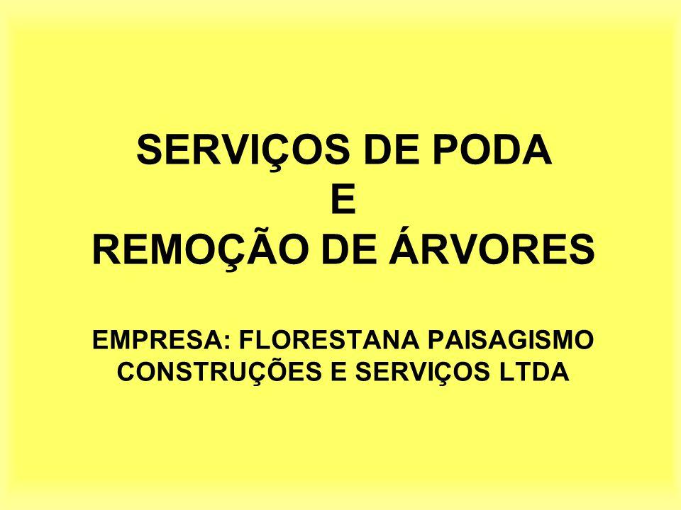 SERVIÇOS DE PODA E REMOÇÃO DE ÁRVORES EMPRESA: FLORESTANA PAISAGISMO CONSTRUÇÕES E SERVIÇOS LTDA