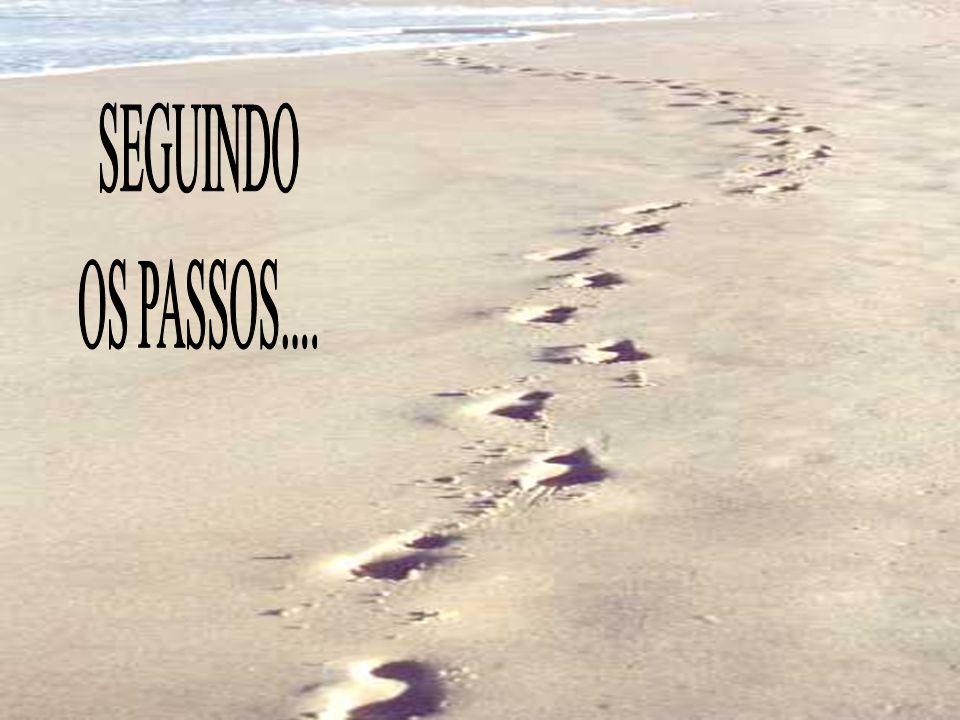 SEGUINDO OS PASSOS....