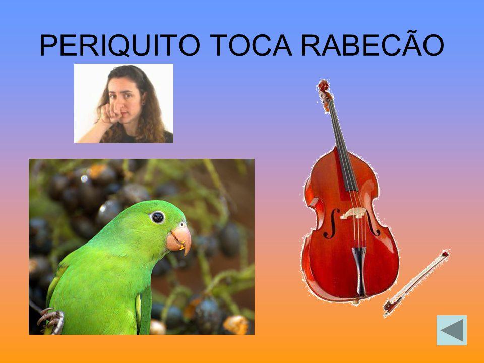 PERIQUITO TOCA RABECÃO