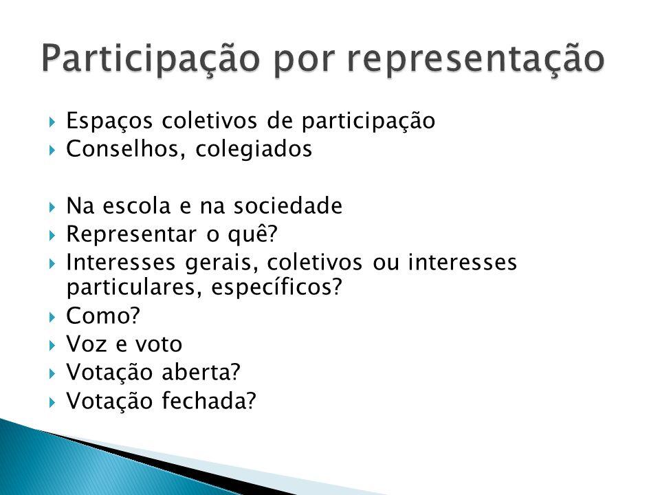 Participação por representação