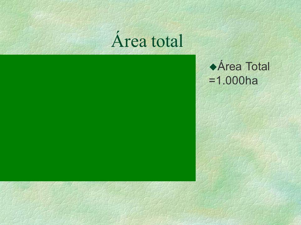 Área total Área Total =1.000ha