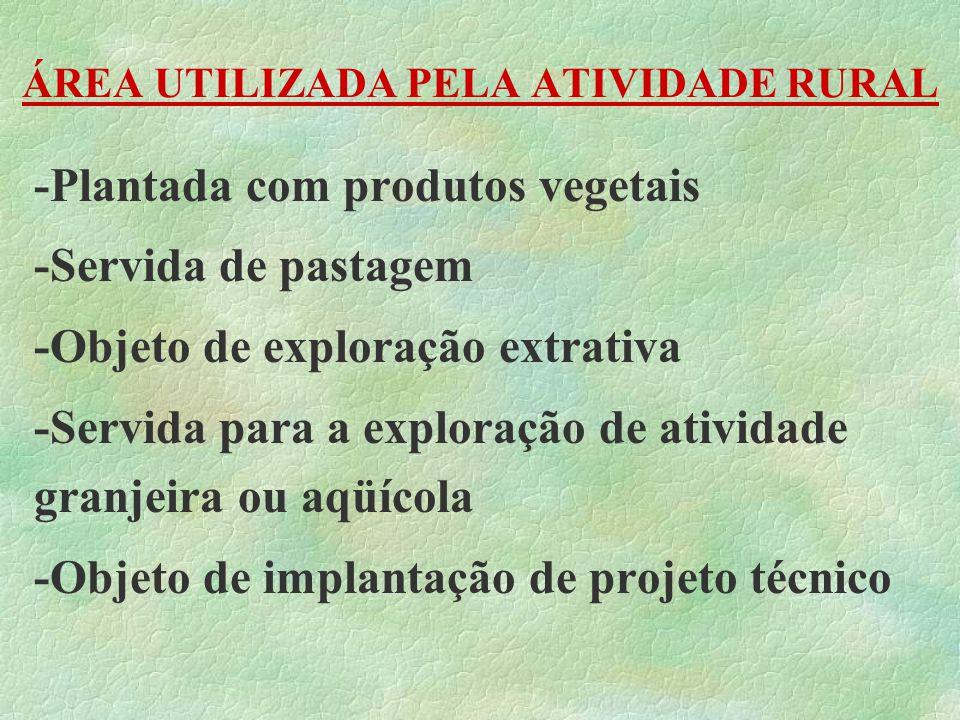 ÁREA UTILIZADA PELA ATIVIDADE RURAL