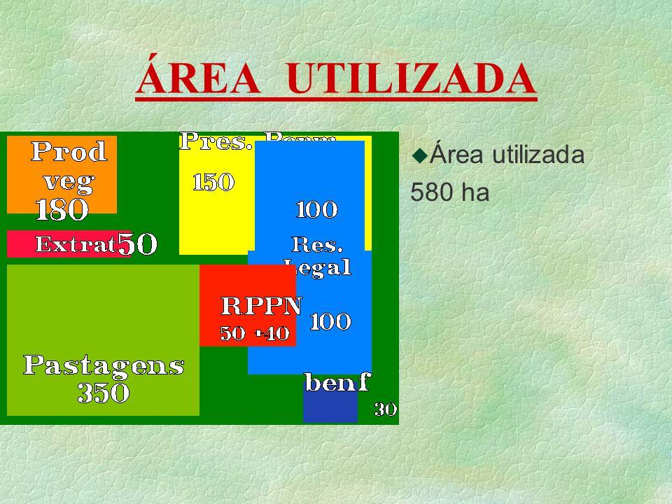 ÁREA UTILIZADA Área utilizada 580 ha