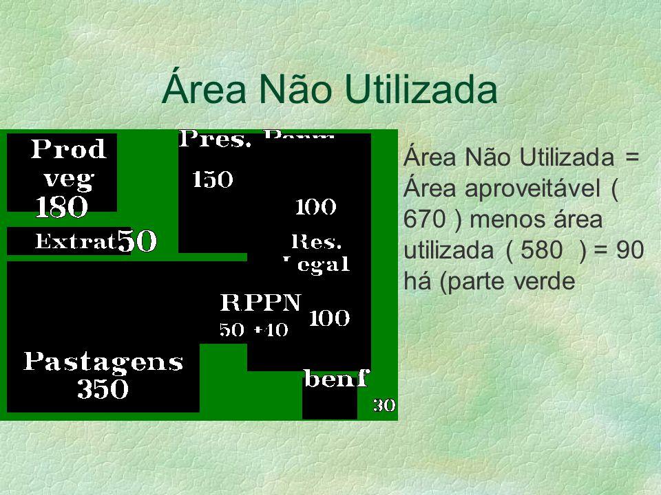 Área Não Utilizada Área Não Utilizada = Área aproveitável ( 670 ) menos área utilizada ( 580 ) = 90 há (parte verde.