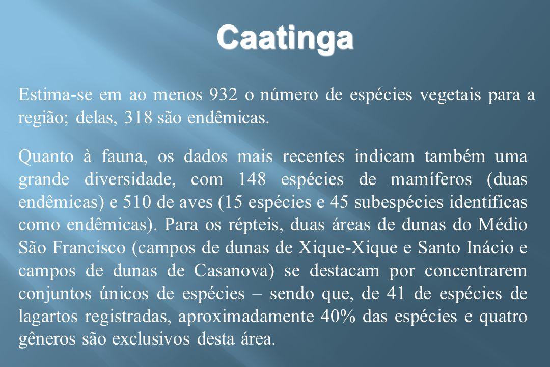 Caatinga Estima-se em ao menos 932 o número de espécies vegetais para a região; delas, 318 são endêmicas.
