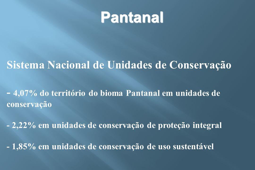 Pantanal Sistema Nacional de Unidades de Conservação - 4,07% do território do bioma Pantanal em unidades de conservação.