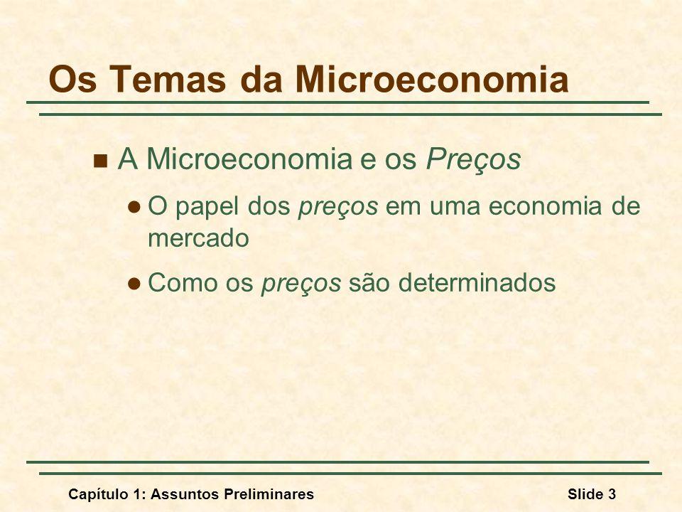 Os Temas da Microeconomia