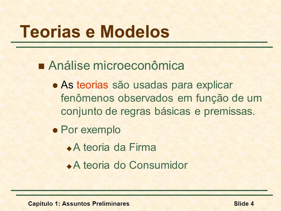 Teorias e Modelos Análise microeconômica