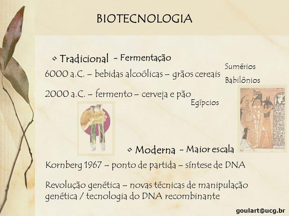 BIOTECNOLOGIA Tradicional Moderna - Fermentação