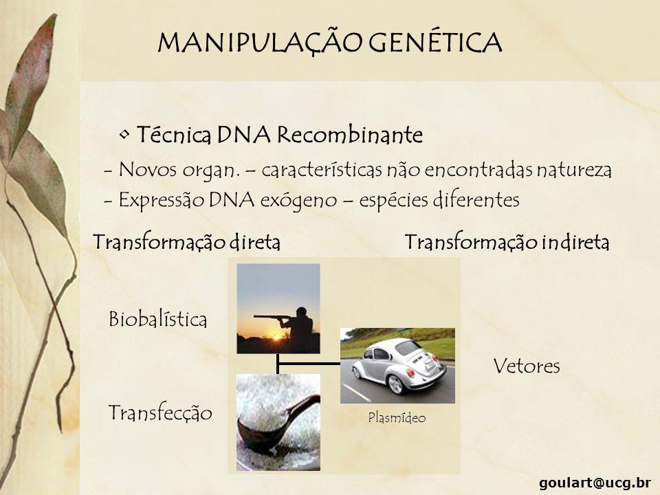 MANIPULAÇÃO GENÉTICA Técnica DNA Recombinante
