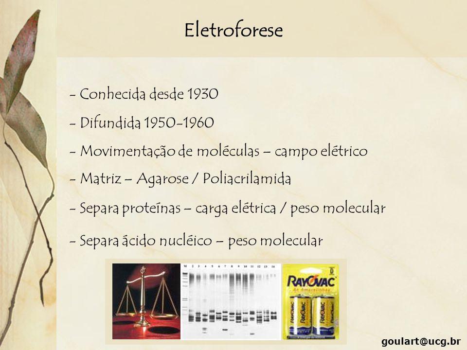 Eletroforese - Conhecida desde 1930 - Difundida 1950-1960