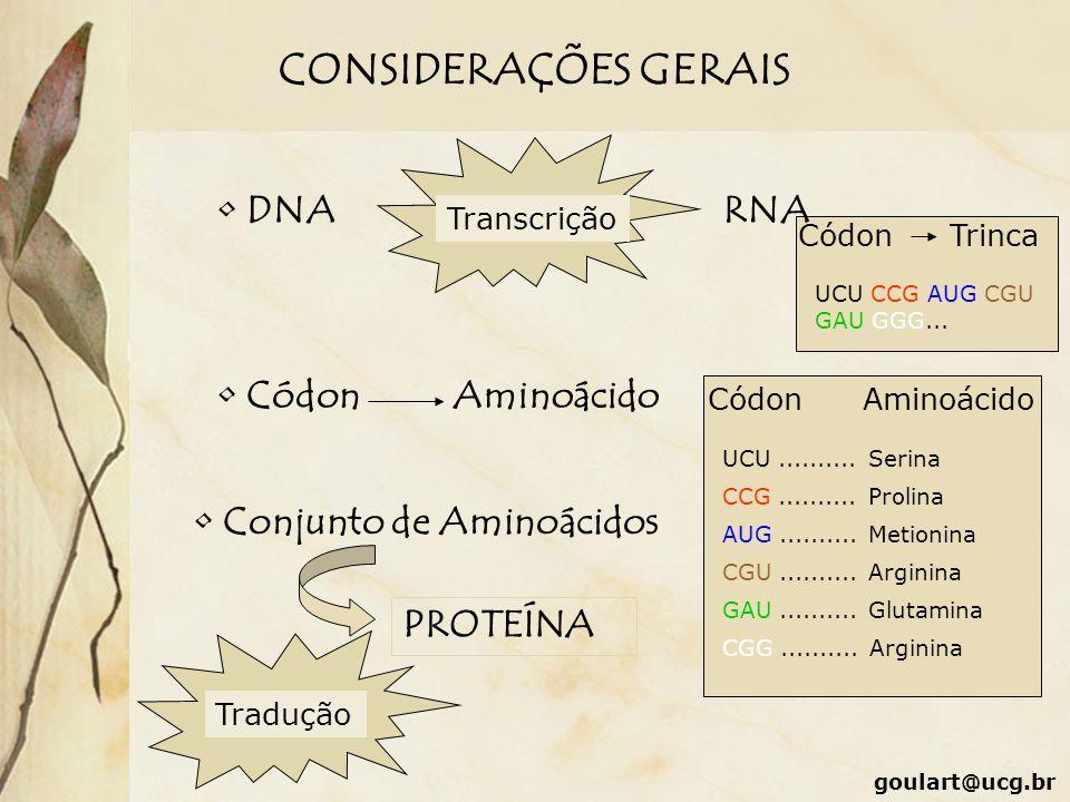 CONSIDERAÇÕES GERAIS DNA RNA Códon Aminoácido Conjunto de Aminoácidos