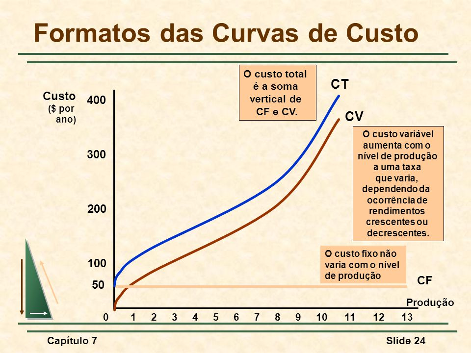 Formatos das Curvas de Custo