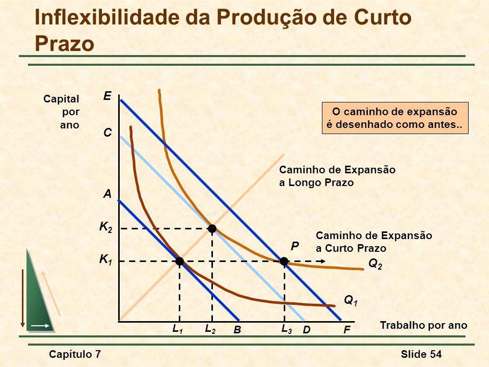 Inflexibilidade da Produção de Curto Prazo