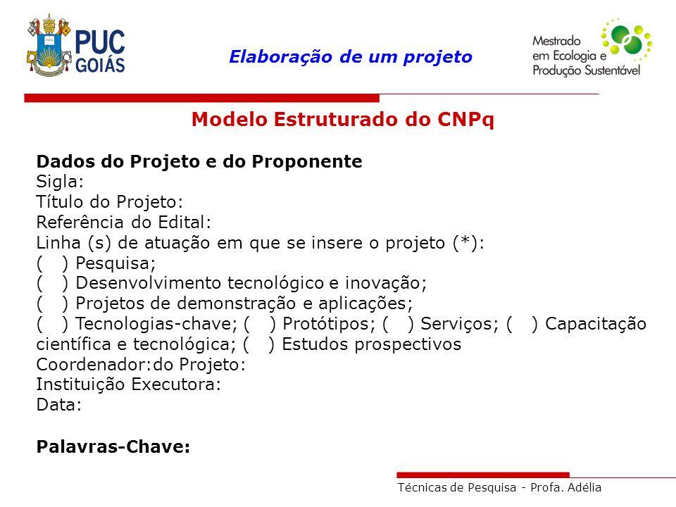 Modelo Estruturado do CNPq