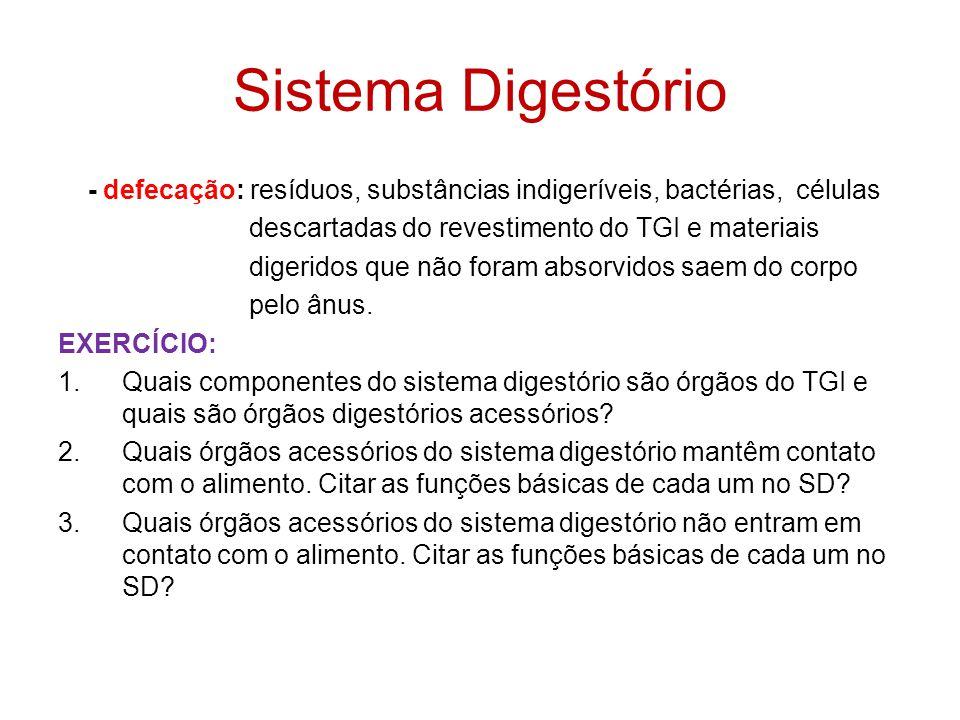 Sistema Digestório - defecação: resíduos, substâncias indigeríveis, bactérias, células. descartadas do revestimento do TGI e materiais.